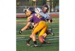 FOOTBALL: Avondale brings the sting upon Hazel Park