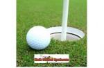 BOYS GOLF: 2012 All-OAA Boys Golf Teams