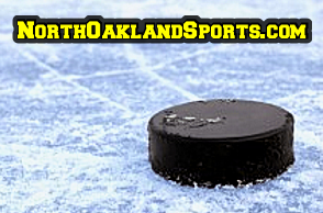 BOYS HOCKEY: 2014 All-Flint Metro League Team